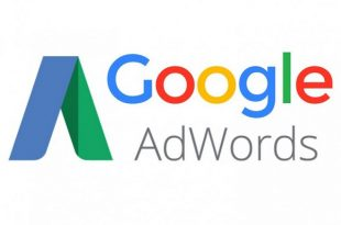 Download Adwords Study Guide Free