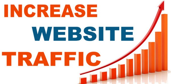 Download Course To Drive Traffic to your Website