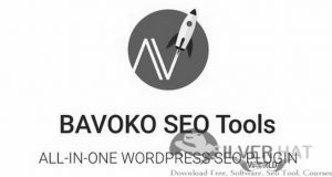 BAVOKO SEO Tools Plugin Download