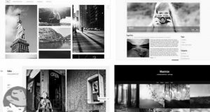 Free New Photography Theme Download